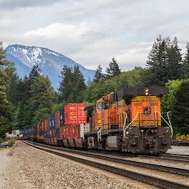 Train in Skykomish by Paul Hoy - Uncategorized All Uncategorized ( railroad, moutains, train,  )