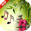 Relaxing Music 2021 icon