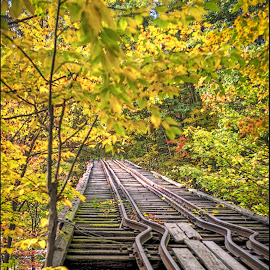Upside Covered Bridge by Bill Gordon - Buildings & Architecture Decaying & Abandoned ( new hampshire, railroad, covered bridge, autumn, franklin, tracks )