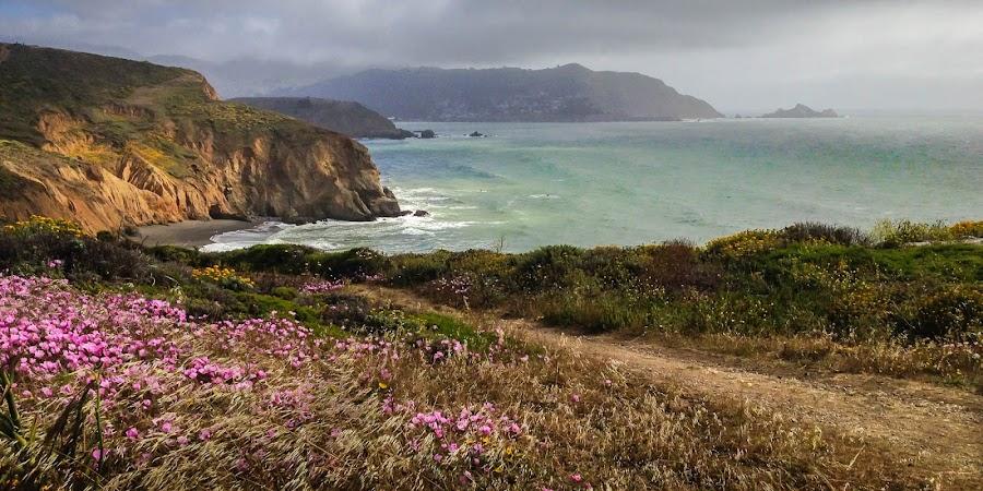 Mori Point by Larry Rosenstein - Instagram & Mobile iPhone ( pacifica, ocean )