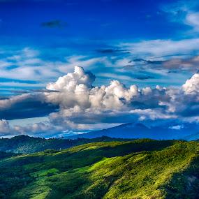 The Jungle, Peru by Maritere Izaguirre - Landscapes Forests ( #landscapes, #tarapotoperu, #maritereizaguirre, #selvaperuana, #perú, #paisaje, #peru, #peruvianjungle )
