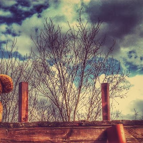 Teddy and old Ball wait for her by Nat Bolfan-Stosic - Artistic Objects Toys ( ball, old )