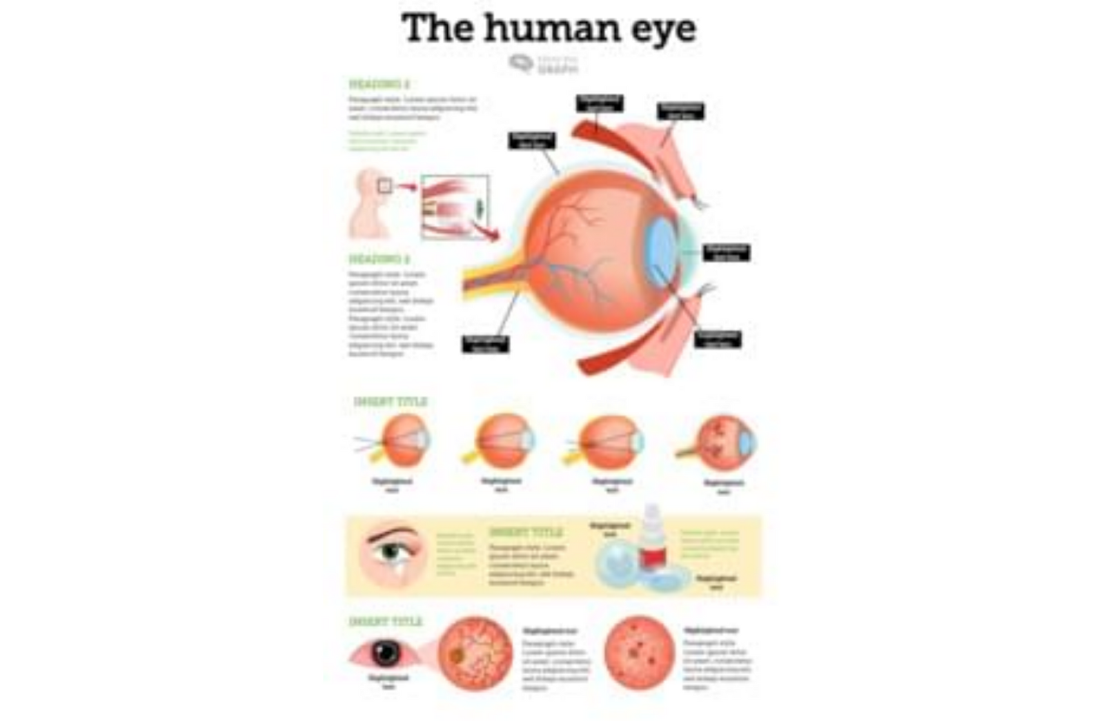 """example of work done in """"mind the graph"""" , human eye infographic"""