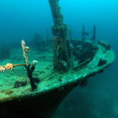 sunken ship live wallpaper
