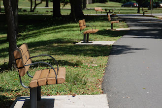 Photo: Day 67 ,,, park benches in Saddle Brook Park