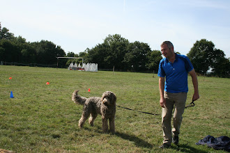 Photo: Brian Labradoodle and Paul