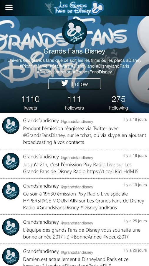 Les Grands Fans De Disney- screenshot