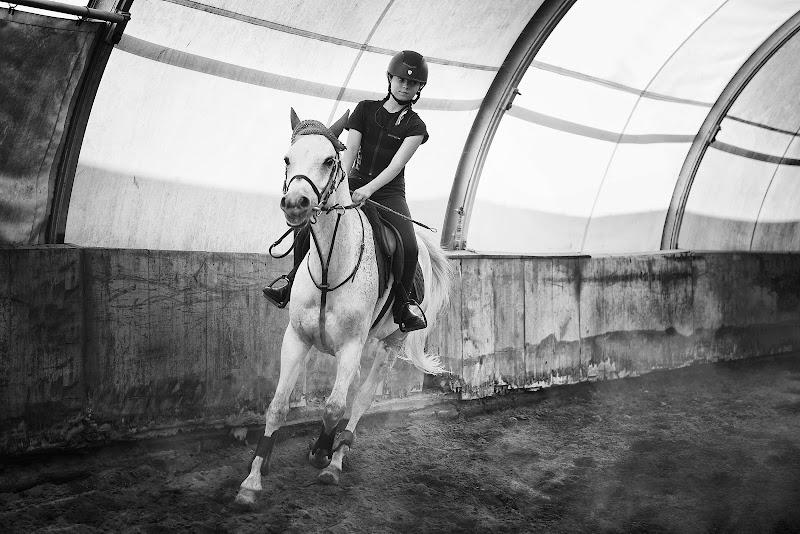 Il Cavallo di Alexx70