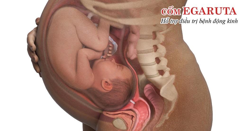 Bệnh động kinh hiếm khi di truyền từ cha mẹ sang con