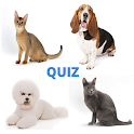Cats & Dogs Quiz - Guess Breeds with Photos icon