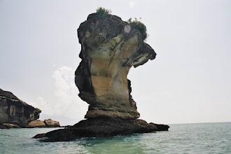 Photo: Parc national de Kuching au Sarawak
