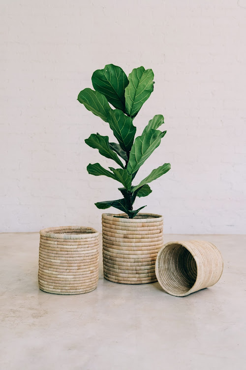 These round baskets by Woolworths x Mo's Crib will add texture and character to your home.
