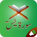 Surah Yaseen With Voice Translaton icon