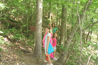 Photo: One of the many nature trails at Camp Toccoa.