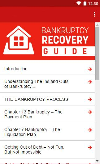 Bankruptcy Recovery Guide- screenshot