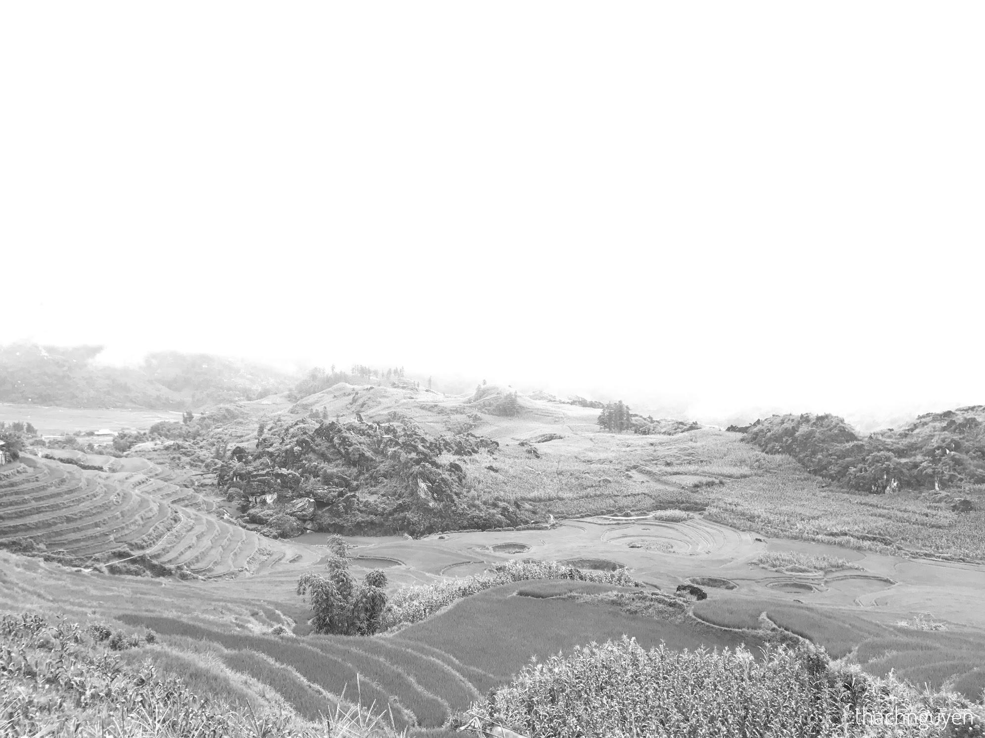 ruộng bậc thang - bản tả pìn