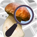 Mushroom Identify - Automatic picture recognition 2.40 (AdFree)