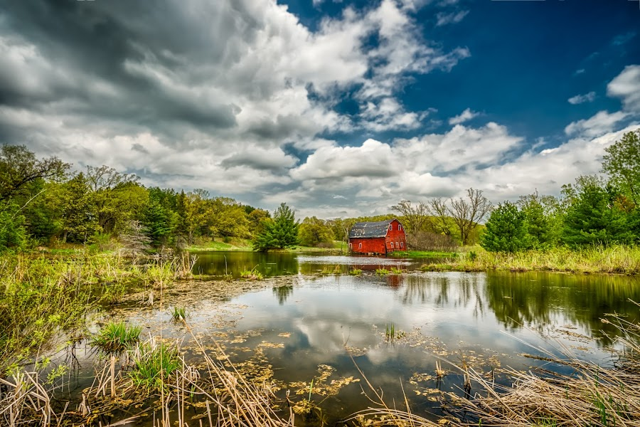 Pond Barn by Mark Goodman - Buildings & Architecture Other Exteriors ( zimmerman, minnesota, barn, landscape, pond, lovina township )
