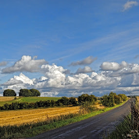 Wiltshire, England by Andrea Everhard - Landscapes Prairies, Meadows & Fields
