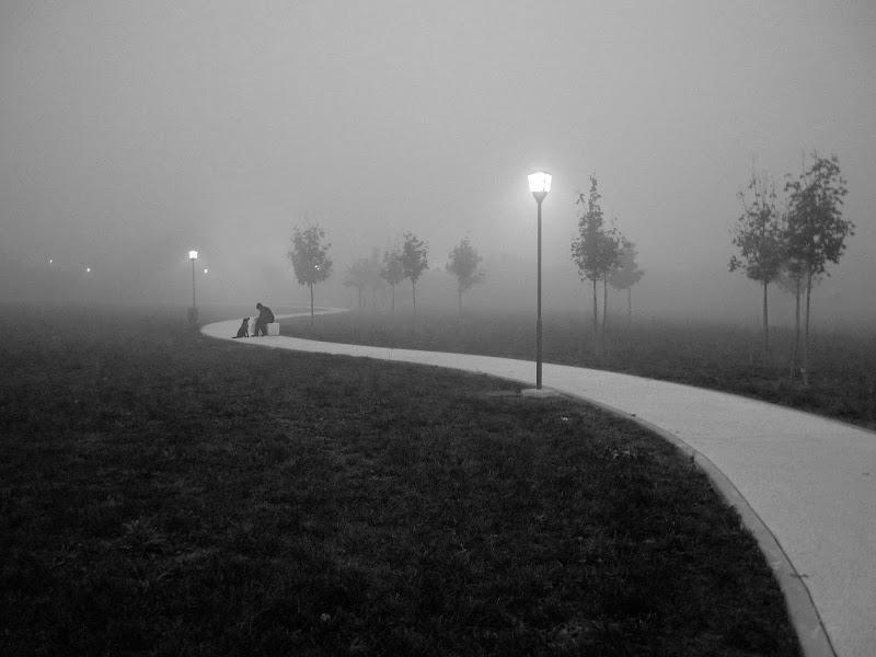 PM 10 di roberto-copeta