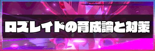 ポケモン剣盾 特攻