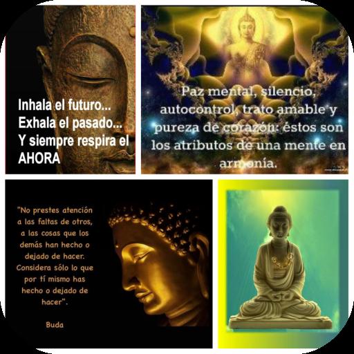 App Insights Imágenes De Buda Con Frases Apptopia
