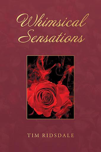 Whimsical Sensations cover