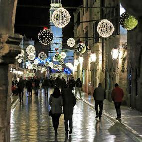 by Boris Buric - Public Holidays Christmas (  )