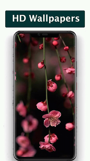 Wallpapers for infinix 2020 ss1