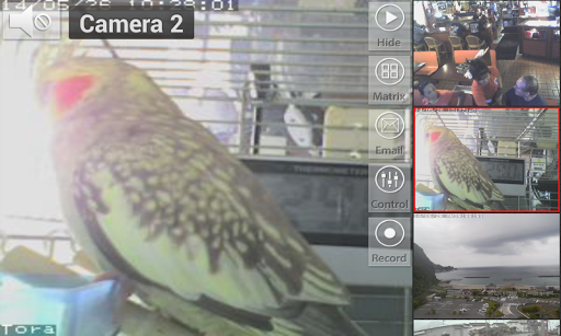 Viewer for ICam IP cameras screenshot