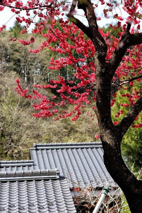Magome - Tsumago