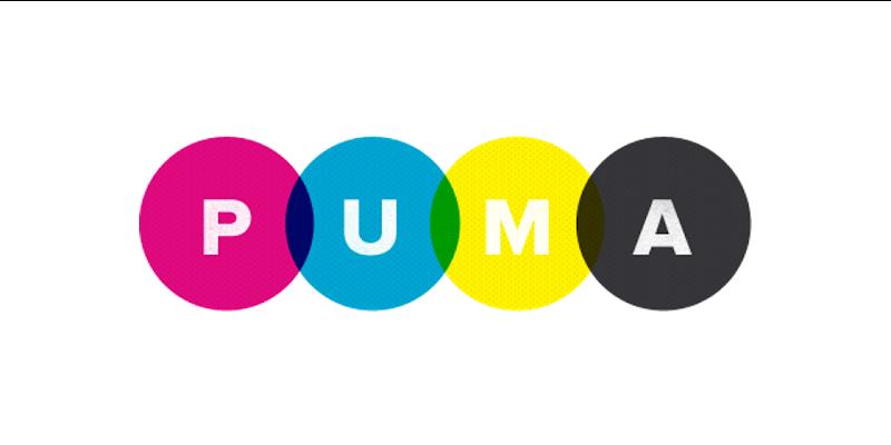 Puma Webserver