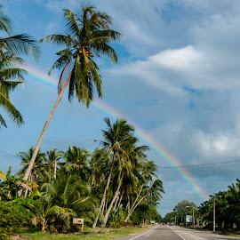 by Roger Foo - Landscapes Travel ( rainbow, road trip, coconut trees, malaysia, johor )