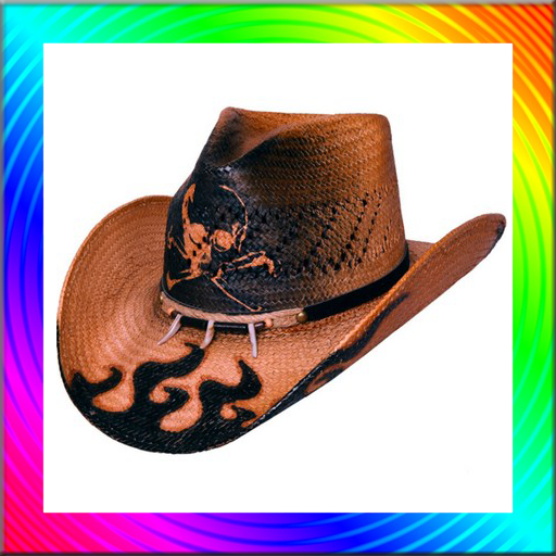 Fashion Style Cowboy Hat