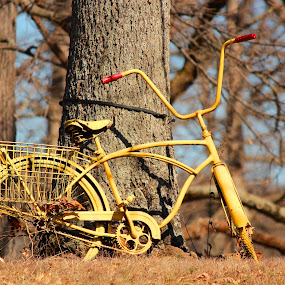 by Mark Wathen - Transportation Bicycles