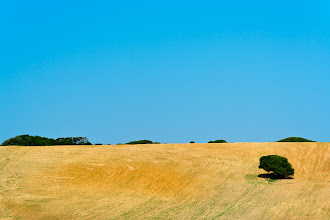 Photo: Bare hillside, Sardinia
