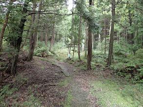 林道終点に登山口(鳥居のある所)
