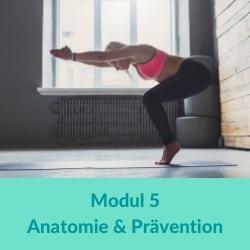 Vinyasa Yoga Anatomie