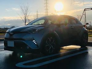C-HR ZYX10 G LED edition のカスタム事例画像 メルさんの2018年11月02日07:38の投稿