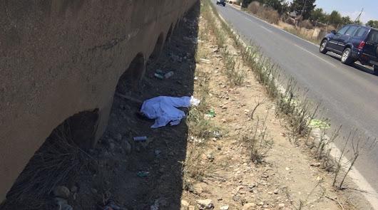 A prisión por homicidio imprudente y omisión de socorro el conductor de Níjar
