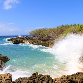 Water Blow - Nusa Dua Bali by Andreas Tan - Landscapes Beaches