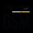 AW19 GSM icon