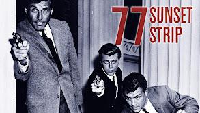 77 Sunset Strip thumbnail