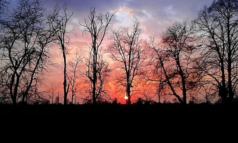 Che sensibilità il sole: arrossire tutte le sere al momento di tramontare. (Fabrizio Caramagna) di _Chiara_