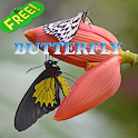 Butterfly Ideas icon