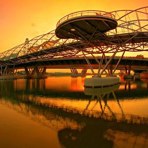 DNA Bridge_428.JPG