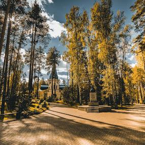 Ganina Jama. by Darijan Mihajlovic - Landscapes Forests
