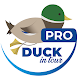 Duck in tour PRO