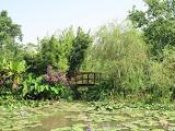 莫內的花園