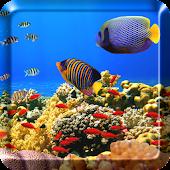 Ocean Fish Live Wallpaper Free